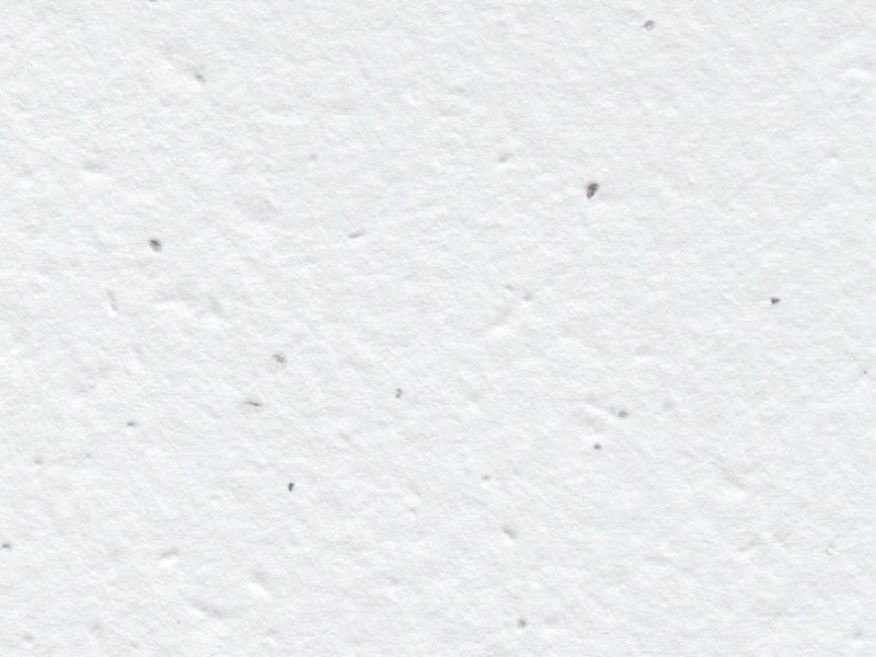 Handmade white seeded paper from Plantable Seed Paper