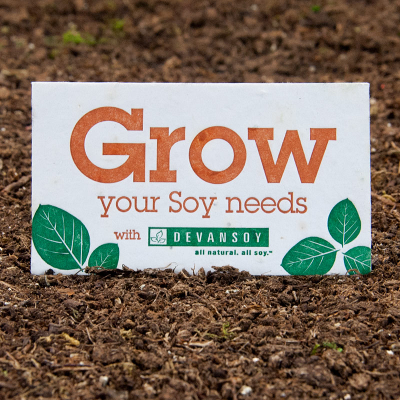 Seed Paper Products | Ready for You to Personalize!