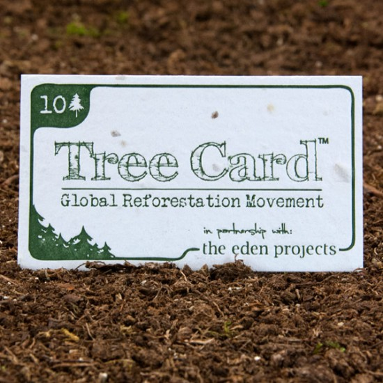 Custom letterpress business card on plantable paper from Plantable Seed Paper