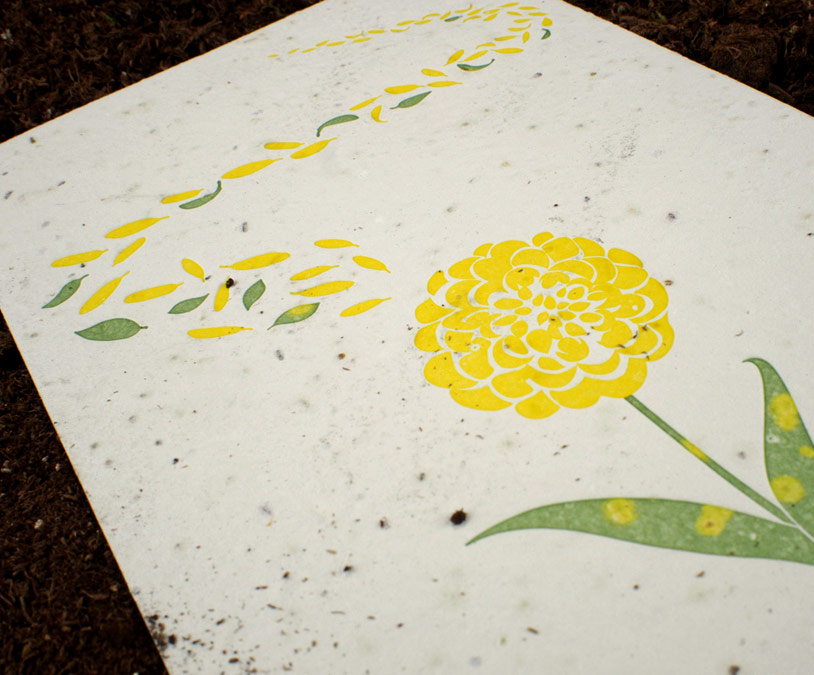 Custom letterpress card on plantable paper from Plantable Seed Paper
